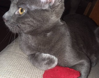 Heart Cat Toy | Felt Cat Toy | Catnip Toy | Kitten Toy | Catnip Filled Toy | Three Set | Three Felt Heart Toys | Cat | Kitten | Heart |