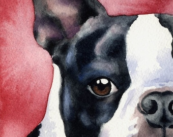 Boston Terrier Art Print Signed by Artist DJ Rogers