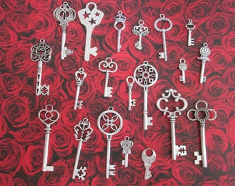 20 2.9 to 6.8 cm A silver key charms