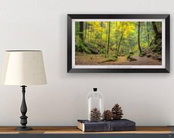 Ohio Photography Wall Decor Art Print - Forest Nature Photography Wall Art Print- Hocking Hills Picture
