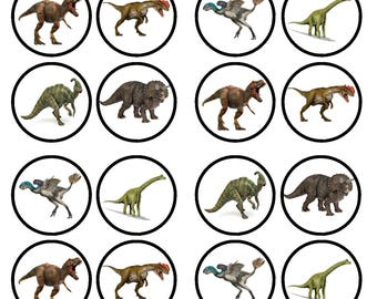 Dinosaur Edible Wafer Rice Paper Cake Cupcake Toppers x 24