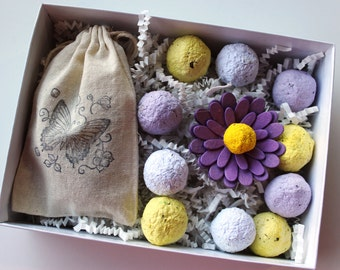 Plantables and Paper Sampler Box - Purple Hues - MADE TO ORDER