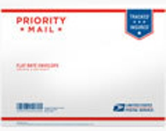 Priority Flat Rate Small Box