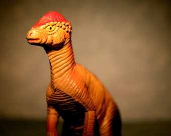 Pachycephalosaurus  - Dinosaur Photograph - Various Sizes