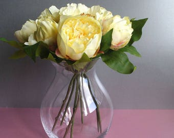 A Bloom of Yellow Peony Roses