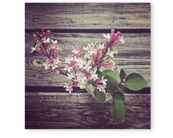 Floral photography, Rustic Flower Photo, floral art, flower print, cottage home decor, nature print, flower photography, floral, wall decor