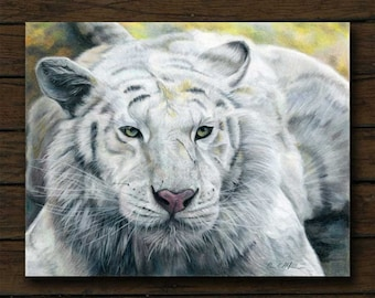 White Tiger colored pencil artwork archival giclée print on cradled board with edges