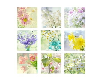 Flower Print Set, Still Life Photography, Nature Photography,  Shabby Chic  Decor, Flower Wall Art Set