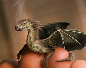 Dragons Blood Incense in assorted packages and in bulk too!