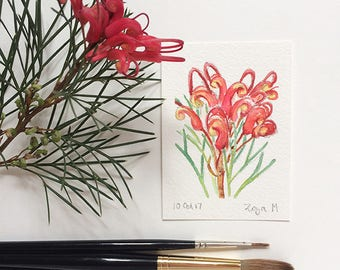 Grevillea - red flower ACEO original mini watercolour painting - affordable art gift for nature lover  - Australian art