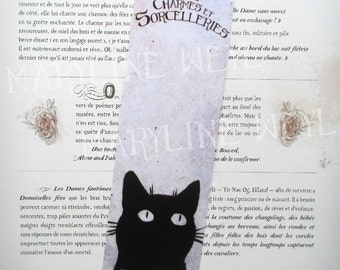 """cats, charms and sorcery"" black cat bookmark"