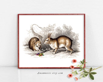 EASTER EGG RABBITS - digital download - printable antique bunny illustration retooled by Anamnesis - image transfer - totes, pillows, prints