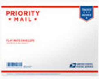 """PRIORITY MAIL Shipping Flat Rate Envelope 12.5"""" x 9.5"""""""