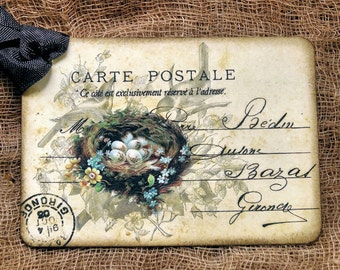 French Bird Nest Eggs Postcard Gift or Scapbook Tags or Magnet #645