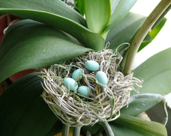 Miniature Bird's Nest with Blue Eggs Fairy Garden Accessory