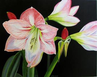 Amaryllis oil flower original painting 16x20