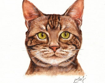 Original Oil CAT Portrait Painting AMERICAN SHORTHAIR Art On Canvas Kitten Signed