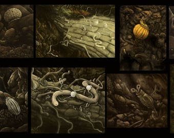 Soil Life Series Package
