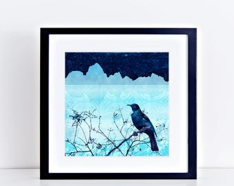 fine art prints bird art limited edition giclee artwork - new zealand art tui, mountains wall art, new zealand print, collage, blue square