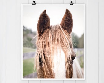 Horse art, Horse photography, Modern Farmhouse Decor, farmhouse decor, horse print, fixer upper decor, girls room wall decor, canvas art