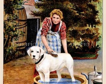 Vintage Print - Jeyes Dog Soap - Digital Download