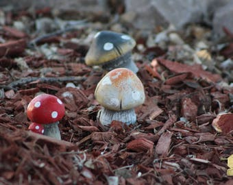 Cluster Of Toadstools In Fairy Garden Photograph Wall Hanging Wall Art Fine Art Photograph Bring the Outdoors In Home Decor Zen Home Deco