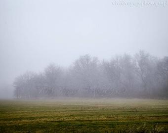 Farm Landscape Photograph, Rustic Wall Art, Fog Photograph, Country Landscape, Tree Photo, Nature Photography, Farmhouse Decor, Rustic Decor