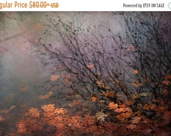 25% Memorial Day Sale leaves Autumn landscape photography pond canvas gallery wrap home decor