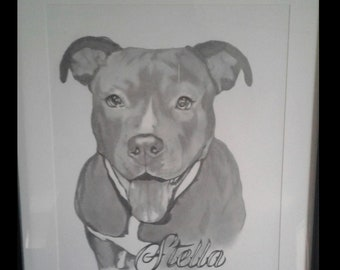 Custom Pet Portrait Pencil Drawing
