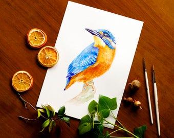 Kingfisher Watercolor Painting Blue Bird Watercolor Kingfisher Wall Art Kingfisher Bird Illustration Nursery Art Bird Lover Gift