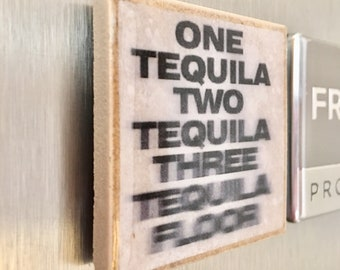 Tequila Kitchen Magnets, Kitchen Decor, Housewarming Gift, Gift for Guy, Funny Magnet, Father's Day Gift, Magnets for Fridge, Humor Magnets