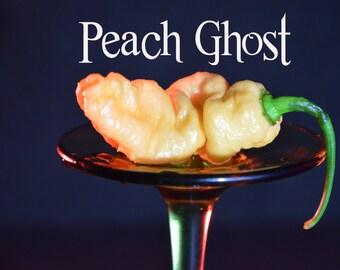 Peach Ghost  (15+ Seeds)