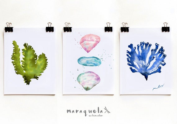 DISCOUNT SET - Algae and Mother-of-pearl shells ILLUSTRATION watercolor. Blue, green, pink hues. Beach, Summer Sea decor watercolor prints