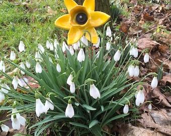 Daffodil/ ceramic flowers