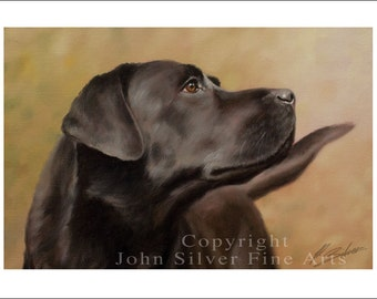 Black Labrador Dog Portrait by award winning artist JOHN SILVER. Personally signed A4 or A3 size Print. BL002SP