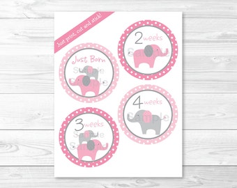 Pink Elephant Monthly Milestone Stickers / Iron Ons / Printable INSTANT DOWNLOAD A334