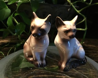 Siamese Salt And Pepper Shakers
