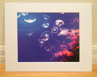 8x10 Jellyfish print with 11x14 mat