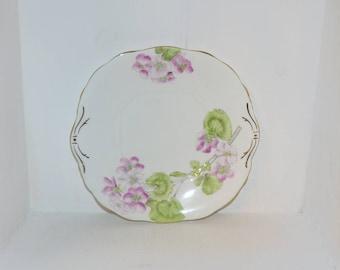 Salsbury England Antique Geranium Platter Fine China - 1786
