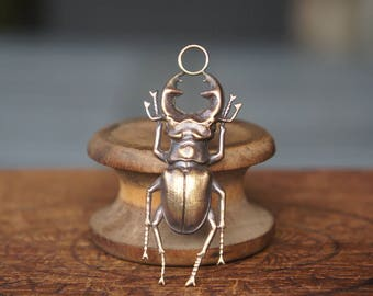 Vintage French Brass Stamping/Antique Style/Stag Beetle/Insect/French Findings