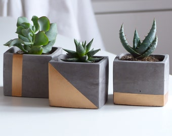 set of 3 unique cube copper concrete planter boxes for cactus, cement succulent terrariums, wedding or housewarming present
