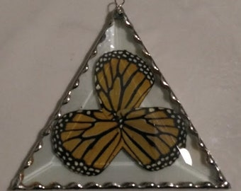 Monarch Butterfly wings under glass.  The trinity.