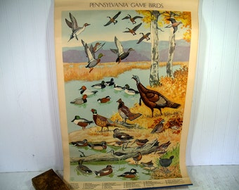 Game Birds Litho Art by Jacob Bates Abbott 1946 Antique Pennsylvania Poster First in Series Distributed by the Pennsylvania Game Commission