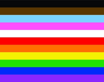 Custom Pride Flag, Philly/Transgender Pride Flag Combo, 4'x6', 11-Stripe flag -Fully Inclusive Flag