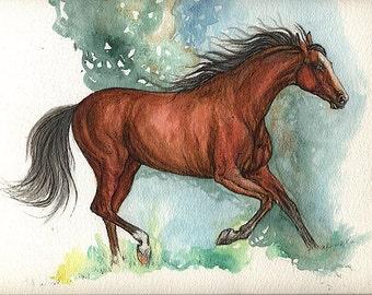 Bay horse original watercolor painting