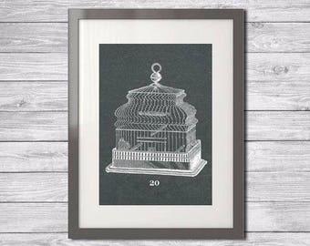 Art Print Printable  - Birdcage Instant Download