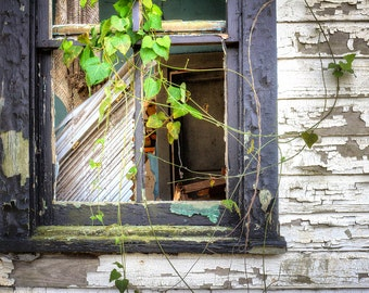 Rustic Window, Rustic Home Decor, Abandoned Places, Gone But Not Forgotten, Beautiful Decay, Fine Art Photography, Large Wall Art