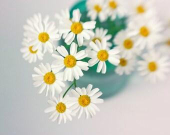 White Daisy Art, Floral Art Print, Housewarming Gift,  White Turquoise Wall Decor, Still Life Photography, Flower Art Print, Nursery Decor