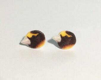 Evening grosbeak earrings jewelry backyard bird birding