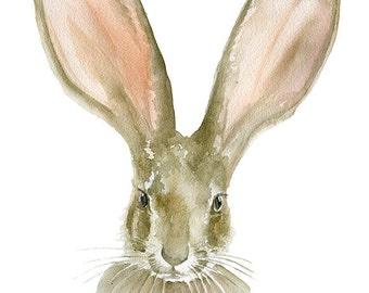 Jack Rabbit Watercolor Painting  11 x 14 Giclee Print Reproduction Woodland Animal Fine Art